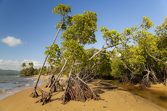 Kurrumine beach Australia
